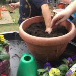 Swan Preschool garden play